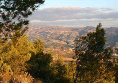 omgeving Pinos del Valle